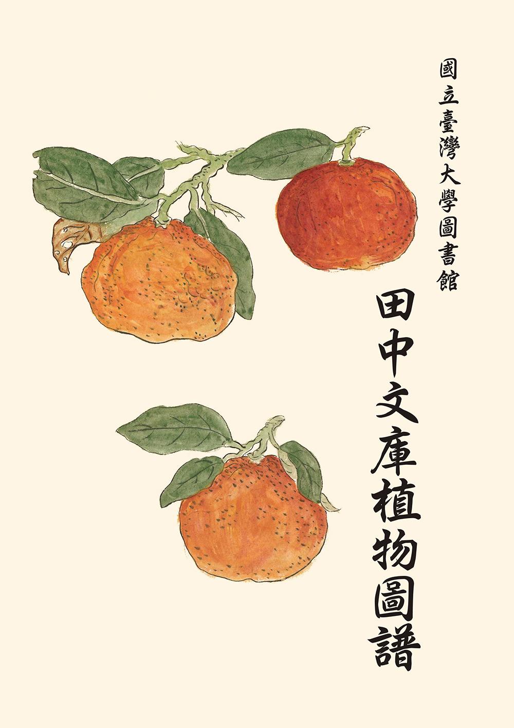 國立臺灣大學圖書館田中文庫植物圖譜